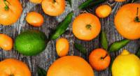 柑橘類(オレンジ、レモン)