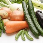どれを使う?5つに分類される食材宅配サービスの種類