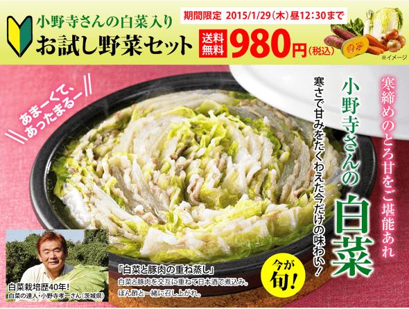 小野寺さんの白菜入りお試し野菜セット