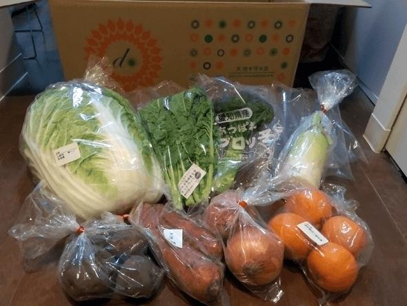 大地宅配のお試し野菜セット