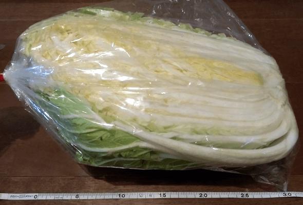 小野寺さんの白菜