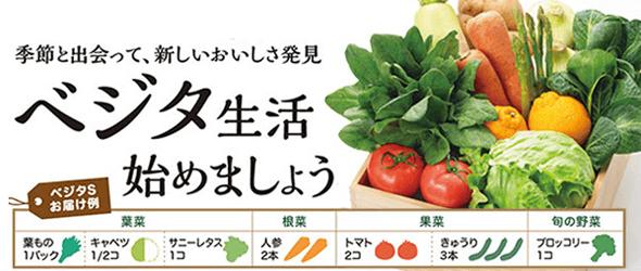 野菜セット「ベジタ」