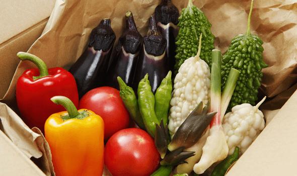 有機野菜系の食材宅配