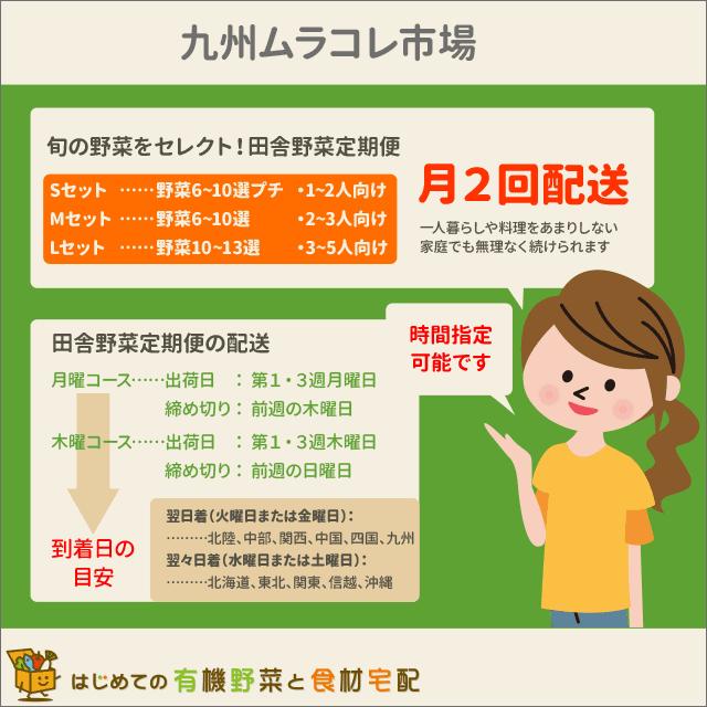 九州ムラコレ市場の特徴