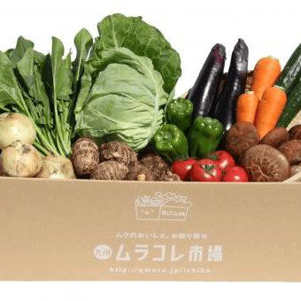 田舎野菜定期便