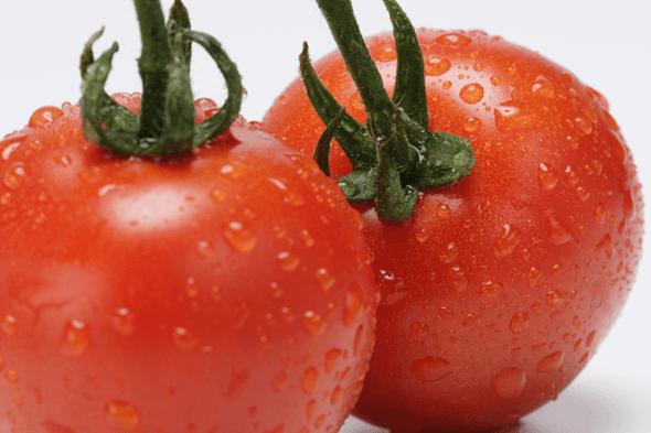 人気トマトランキング