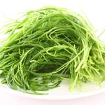 見た目は海草そっくり!栄養満点なおかひじきを使った夏バテ予防レシピ