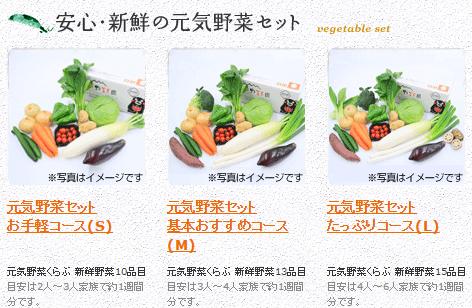 元気野菜セット