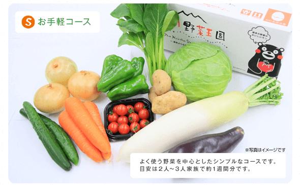 くまモンが目印!九州野菜王国の有機・減農薬野菜セットをお試し徹底レビュー