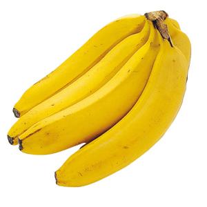 サンタマルタ・バナナ