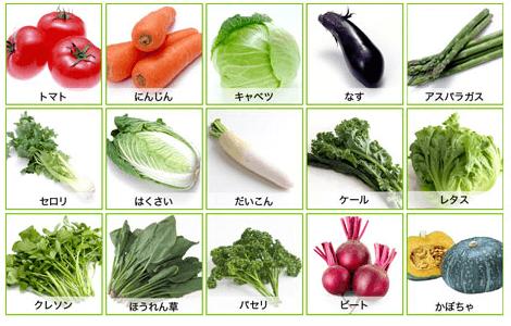 15種類の野菜