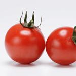 有機野菜を知る上で欠かせないページ