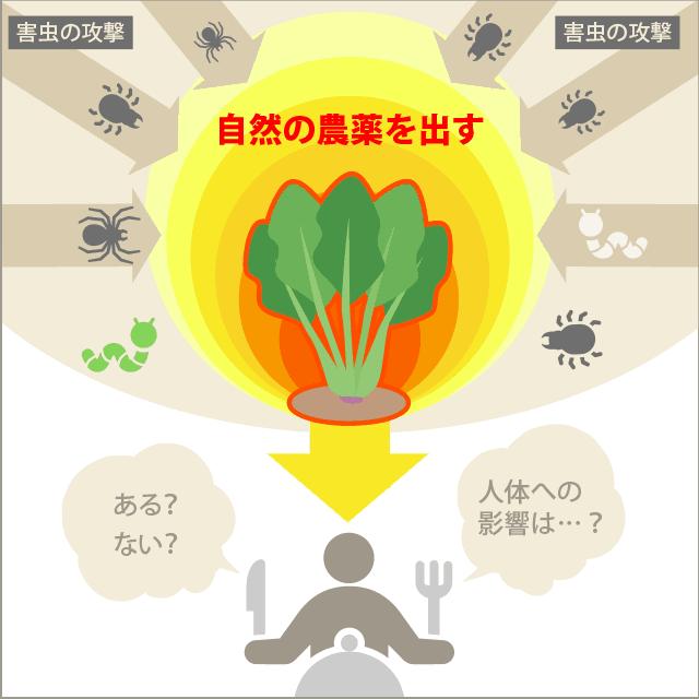 野菜が作る自然の農薬