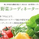 野菜ソムリエとの違いは?野菜コーディネーターの仕事と資格取得の難易度