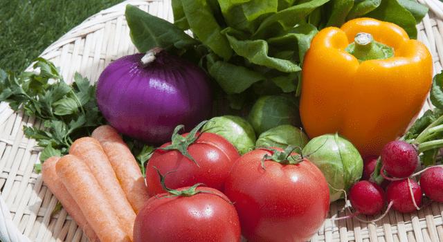 野菜の定期便を頼むなら?おすすめの食材宅配サービス厳選7社